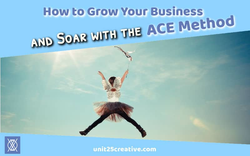 As an entrepreneur, you know how hard it is to grow a business! Sometimes we get stuck in tunnel vision and need someone to haul us out into the light. Check out how the ACE Growth Method can change your business!